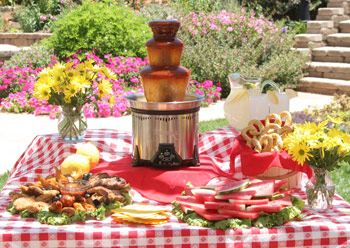 barbecue sauce fountain